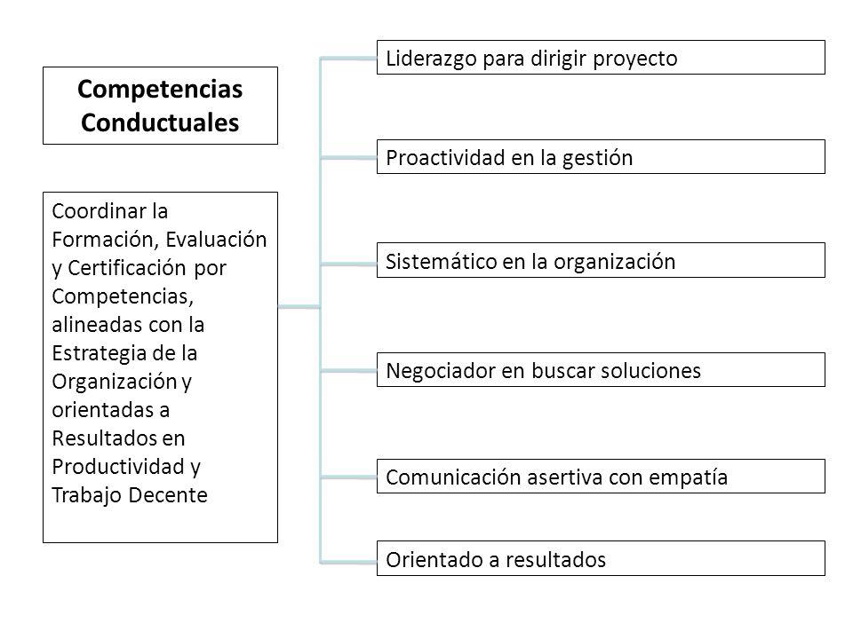 Coordinar la Formación, Evaluación y Certificación por Competencias, alineadas con la Estrategia de la Organización y orientadas a Resultados en Productividad y Trabajo Decente Liderazgo para dirigir proyecto Proactividad en la gestión Sistemático en la organización Negociador en buscar soluciones Comunicación asertiva con empatía Orientado a resultados Competencias Conductuales
