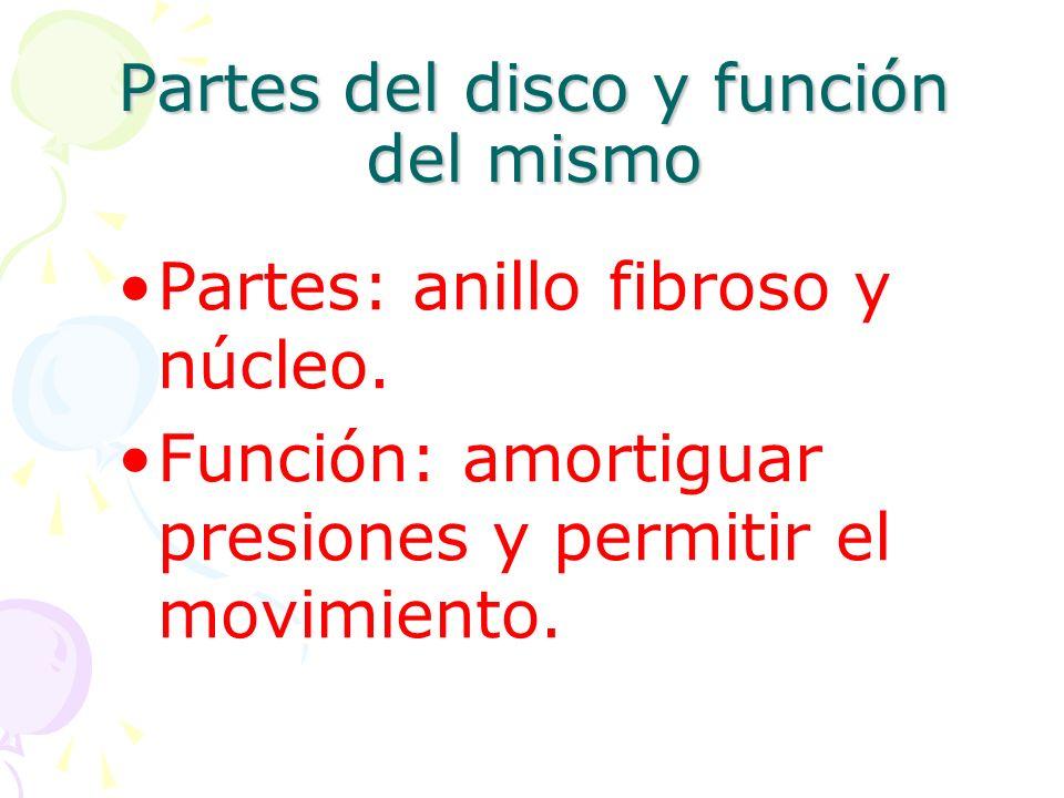 Partes del disco y función del mismo Partes: anillo fibroso y núcleo.