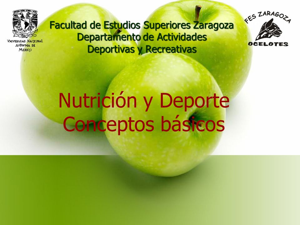 Facultad de Estudios Superiores Zaragoza Departamento de Actividades Deportivas y Recreativas Nutrición y Deporte Conceptos básicos