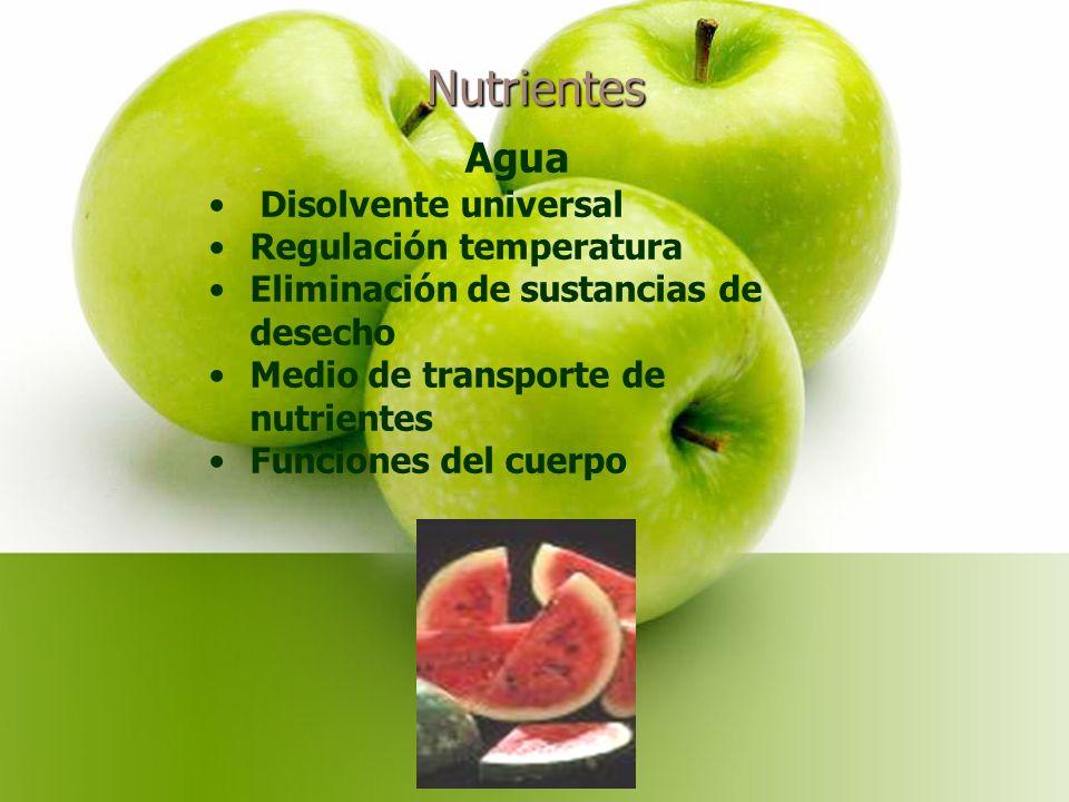 Nutrientes Agua Disolvente universal Regulación temperatura Eliminación de sustancias de desecho Medio de transporte de nutrientes Funciones del cuerpo