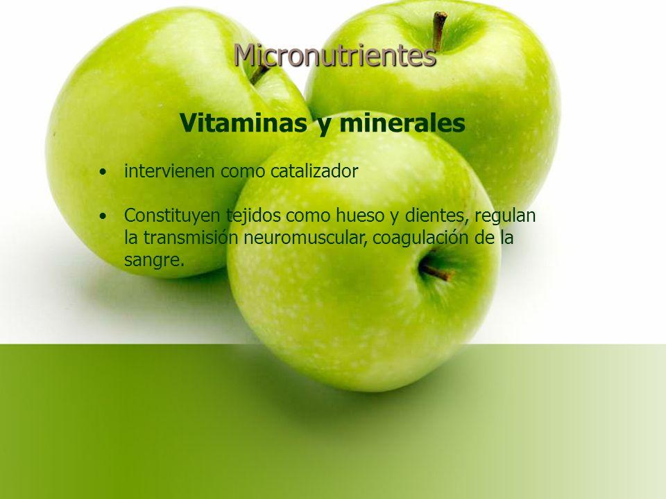 Micronutrientes Vitaminas y minerales intervienen como catalizador Constituyen tejidos como hueso y dientes, regulan la transmisión neuromuscular, coagulación de la sangre.