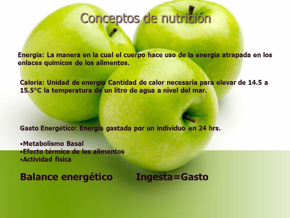 Conceptos de nutrición Energía: La manera en la cual el cuerpo hace uso de la energía atrapada en los enlaces químicos de los alimentos.