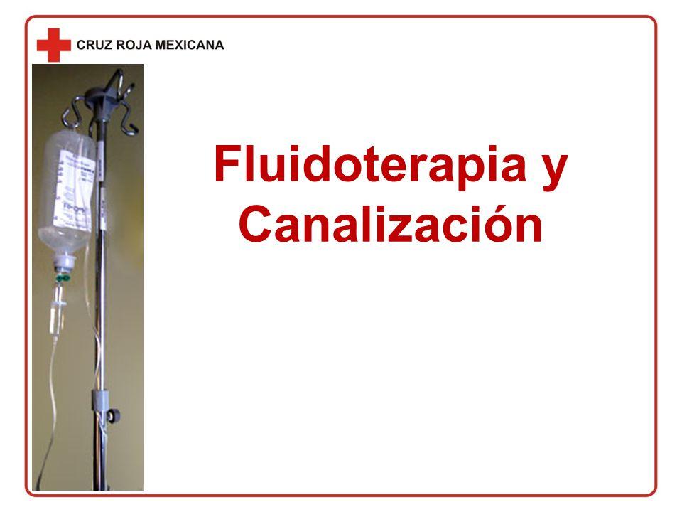 Fluidoterapia y Canalización