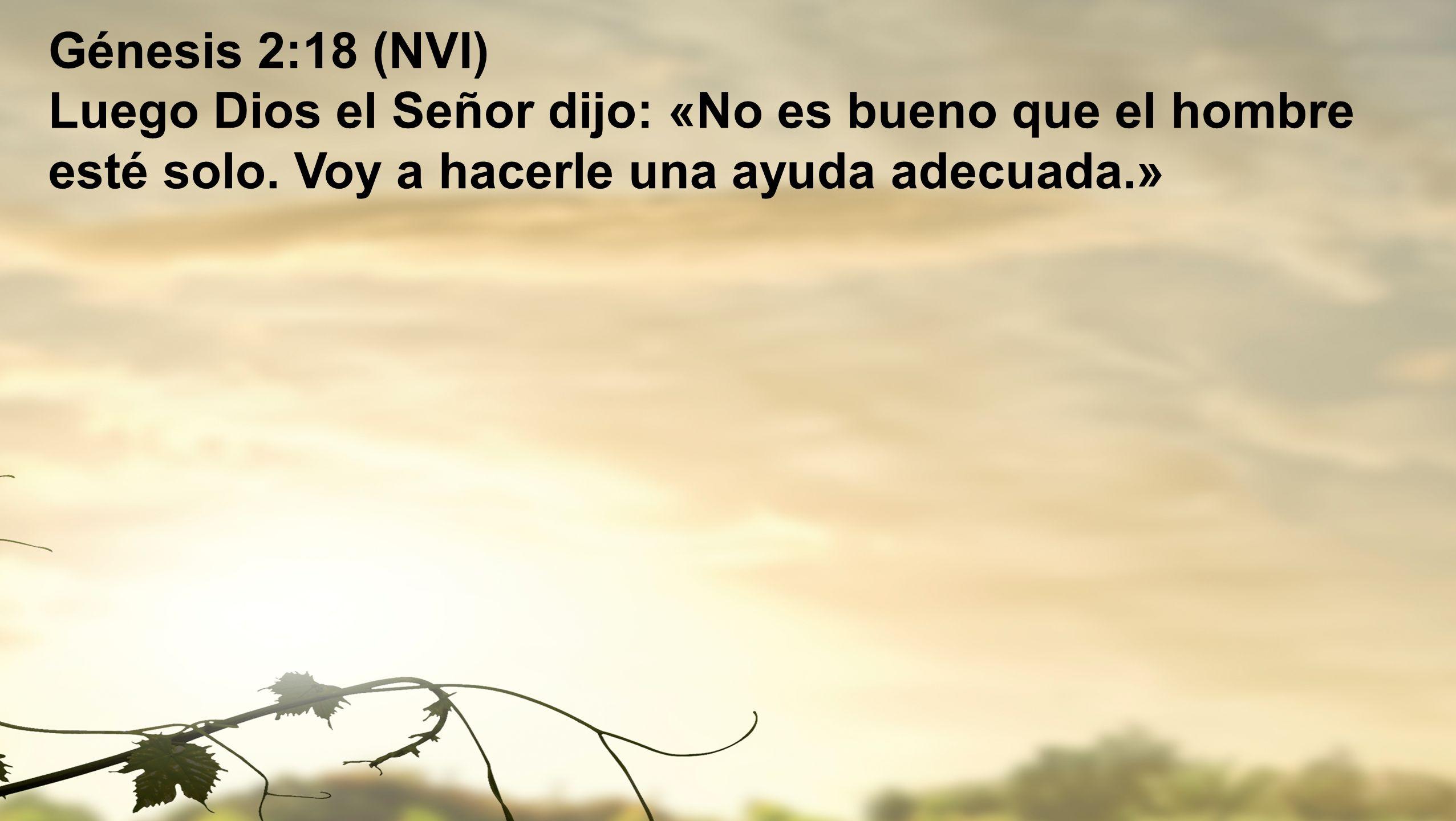 Génesis 2:18 (NVI) Luego Dios el Señor dijo: «No es bueno que el hombre esté solo.