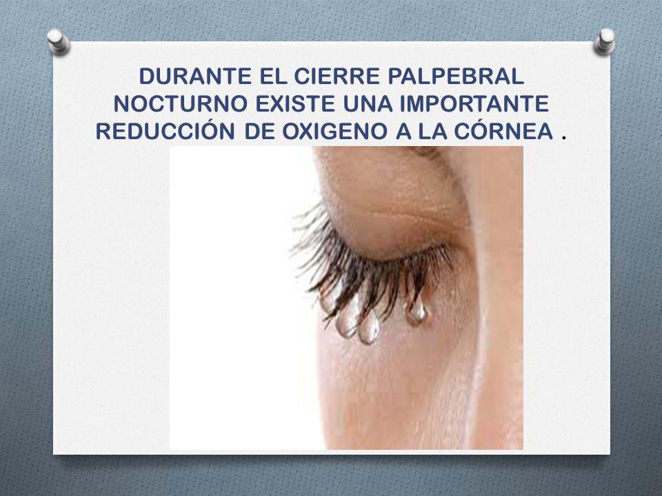 Cambios en la flora microbiana No se ha demostrado que el uso de LC modifique la flora normal de la superficie ocular Se dividen en flora residente y transitoria.