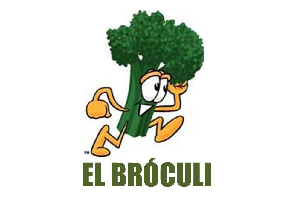 EL BRÓCULI