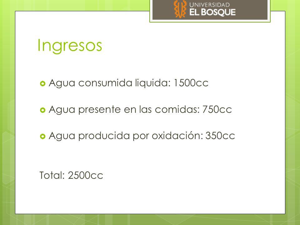 Ingresos  Agua consumida liquida: 1500cc  Agua presente en las comidas: 750cc  Agua producida por oxidación: 350cc Total: 2500cc