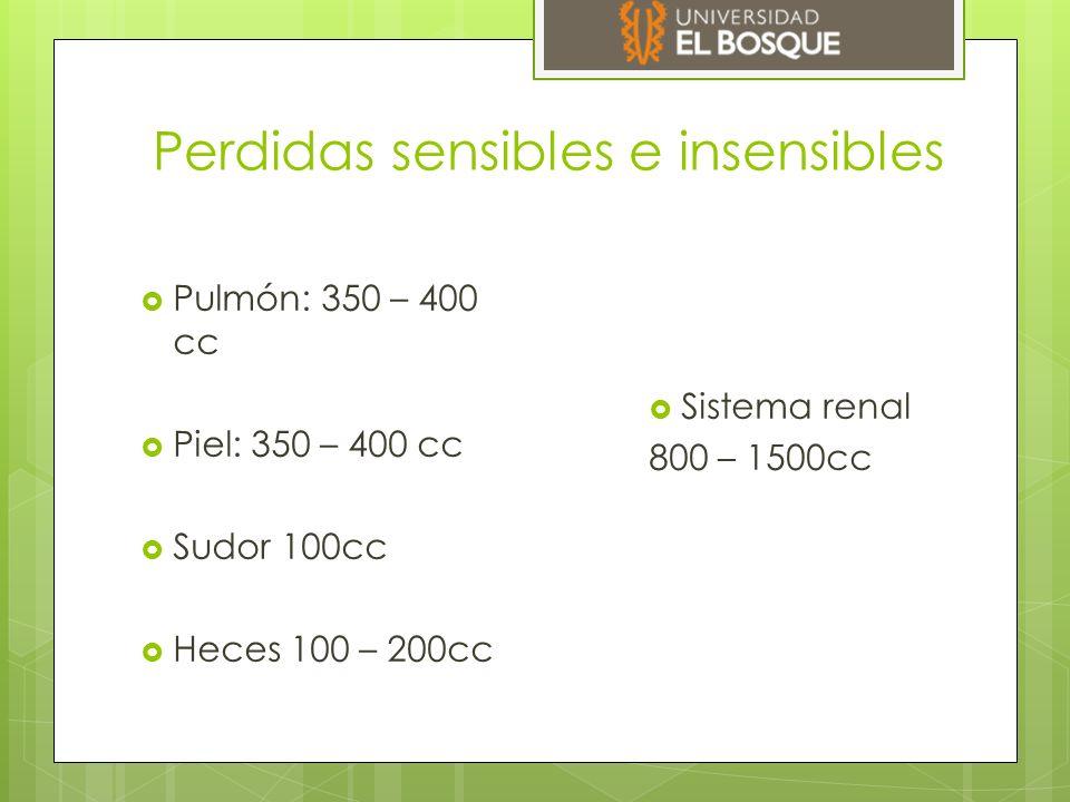 Perdidas sensibles e insensibles  Pulmón: 350 – 400 cc  Piel: 350 – 400 cc  Sudor 100cc  Heces 100 – 200cc  Sistema renal 800 – 1500cc