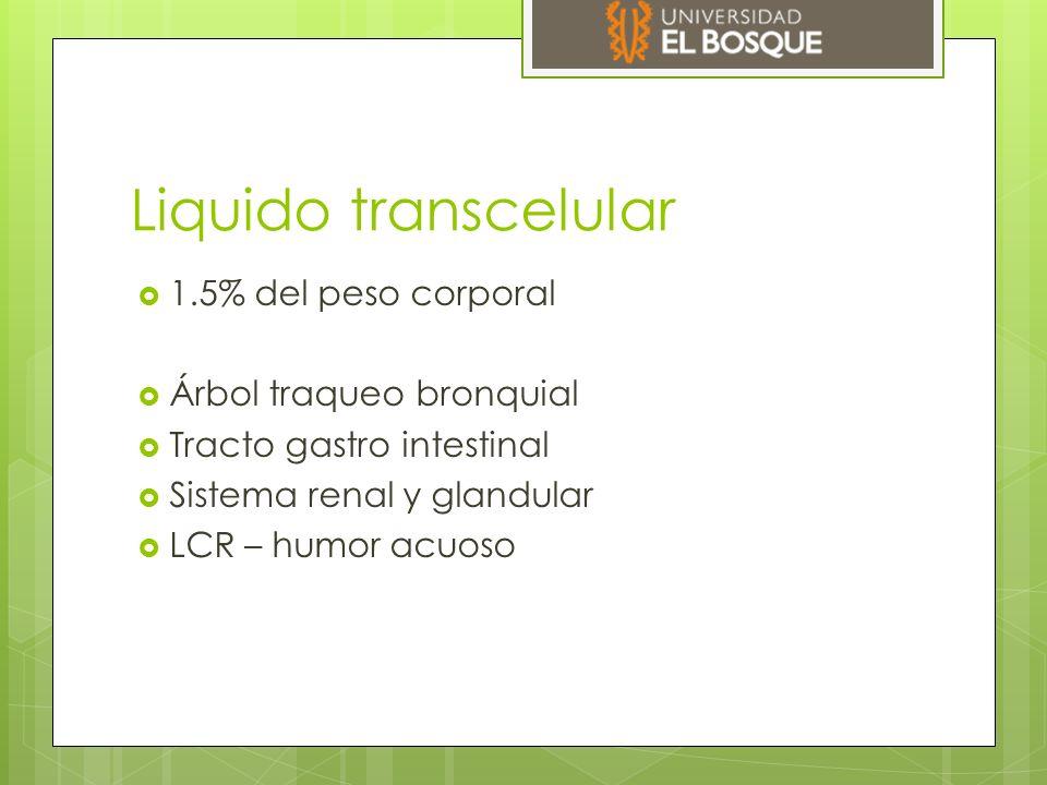 Liquido transcelular  1.5% del peso corporal  Árbol traqueo bronquial  Tracto gastro intestinal  Sistema renal y glandular  LCR – humor acuoso