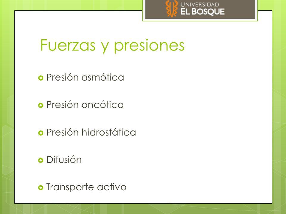 Fuerzas y presiones  Presión osmótica  Presión oncótica  Presión hidrostática  Difusión  Transporte activo