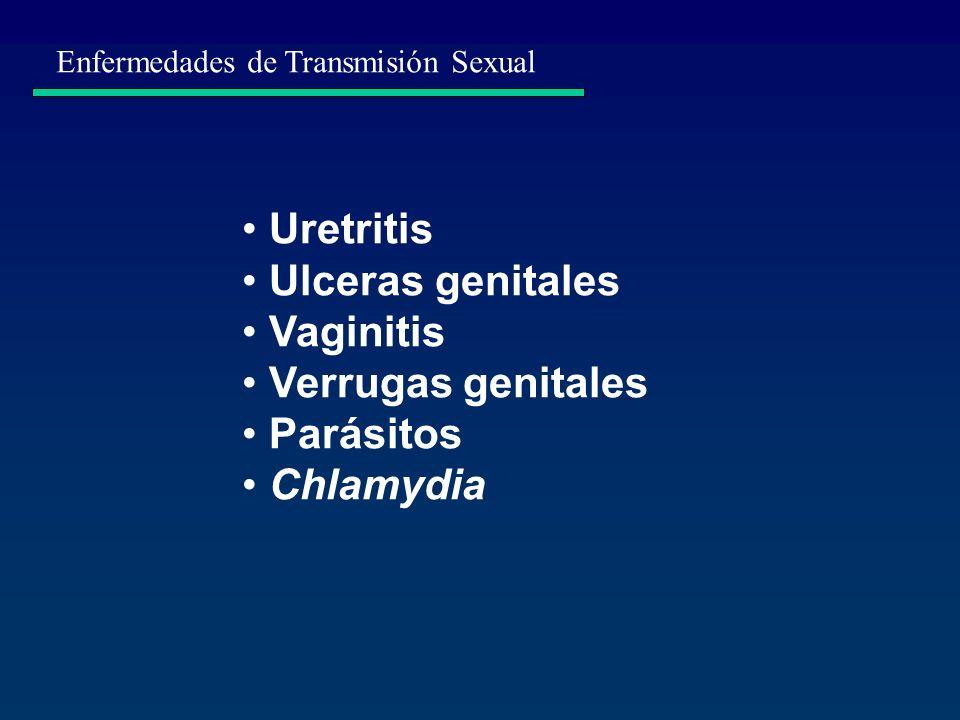 Uretritis Ulceras genitales Vaginitis Verrugas genitales Parásitos Chlamydia Enfermedades de Transmisión Sexual