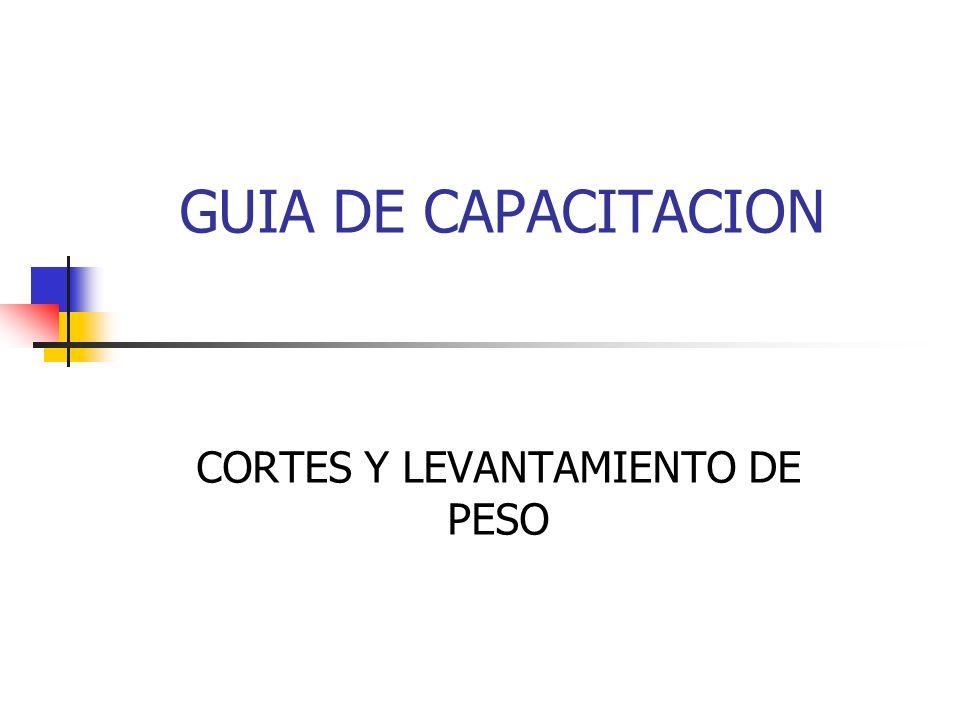 GUIA DE CAPACITACION CORTES Y LEVANTAMIENTO DE PESO