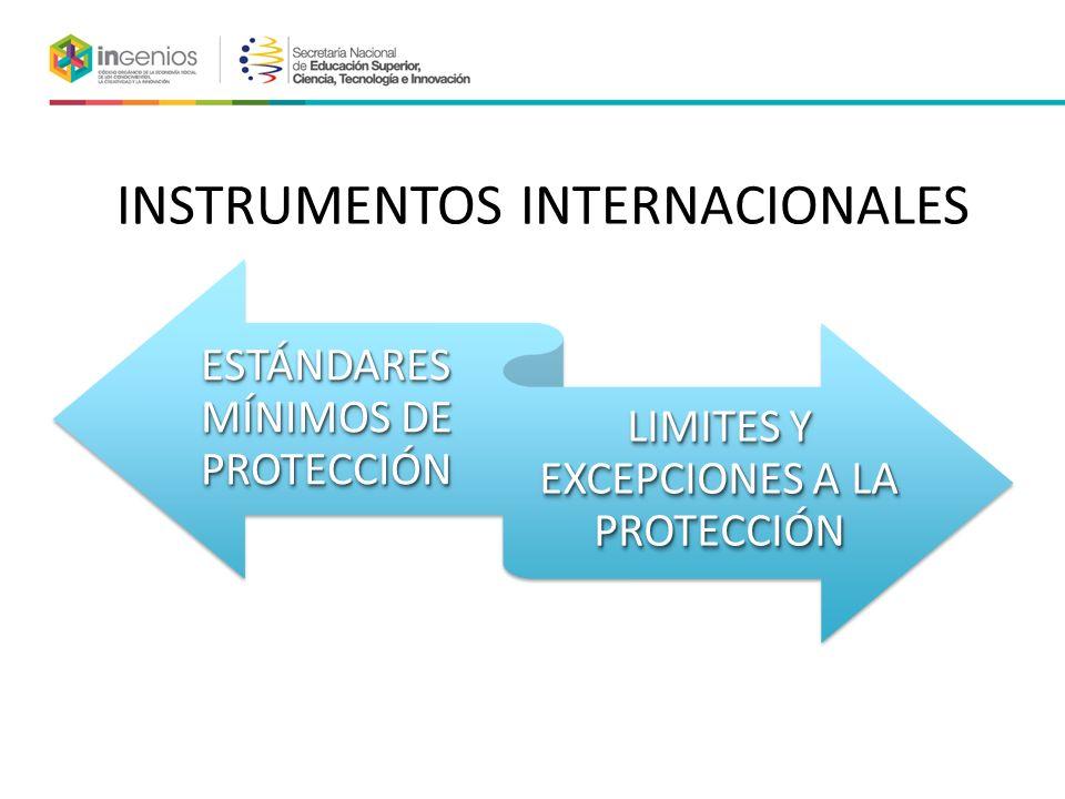 INSTRUMENTOS INTERNACIONALES ESTÁNDARES MÍNIMOS DE PROTECCIÓN LIMITES Y EXCEPCIONES A LA PROTECCIÓN