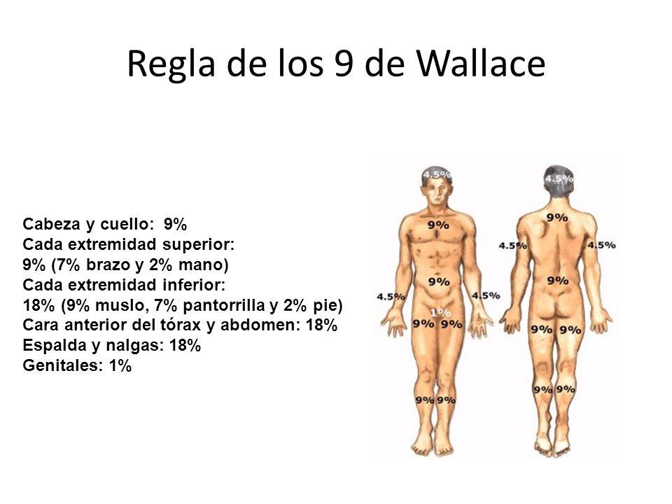 Regla de los 9 de Wallace Cabeza y cuello: 9% Cada extremidad superior: 9% (7% brazo y 2% mano) Cada extremidad inferior: 18% (9% muslo, 7% pantorrilla y 2% pie) Cara anterior del tórax y abdomen: 18% Espalda y nalgas: 18% Genitales: 1%