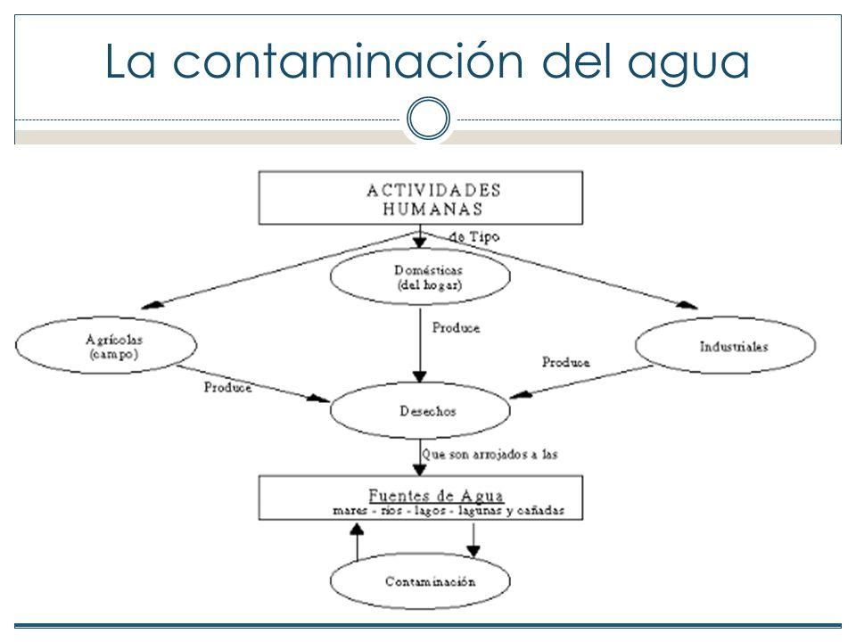 Enfermedades producidas por la contaminación del agua De las 37 enfermedades más comunes entre la población de América Latina, 21 están relacionadas con la falta de agua y con agua contaminada.