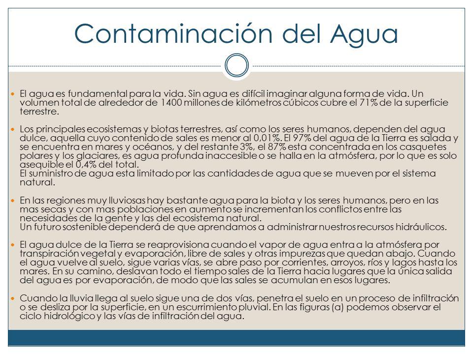 Consecuencias de la contaminación del agua en la salud de la población La contaminación de las aguas es responsable de numerosas enfermedades trasmitidas por los diversos microorganismos que se encuentran en las aguas contaminadas.