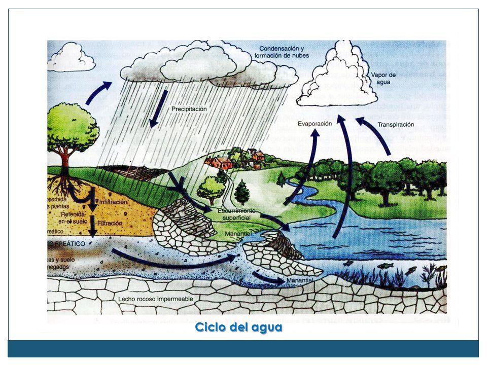 Gran parte de los problemas ambientales que encaramos proceden de los efectos directos e indirectos del ciclo hidrológico, que se clasifican en tres categorías: (1) modificación de la superficie terrestre, (2) contaminación y (3) extracción.