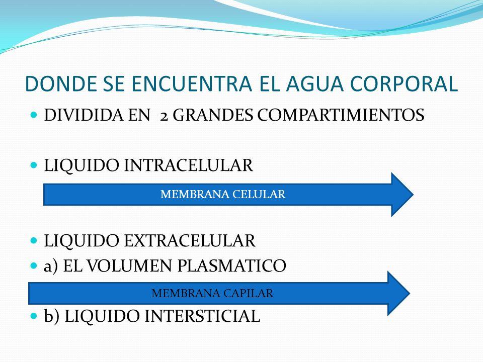 DONDE SE ENCUENTRA EL AGUA CORPORAL DIVIDIDA EN 2 GRANDES COMPARTIMIENTOS LIQUIDO INTRACELULAR LIQUIDO EXTRACELULAR a) EL VOLUMEN PLASMATICO b) LIQUID