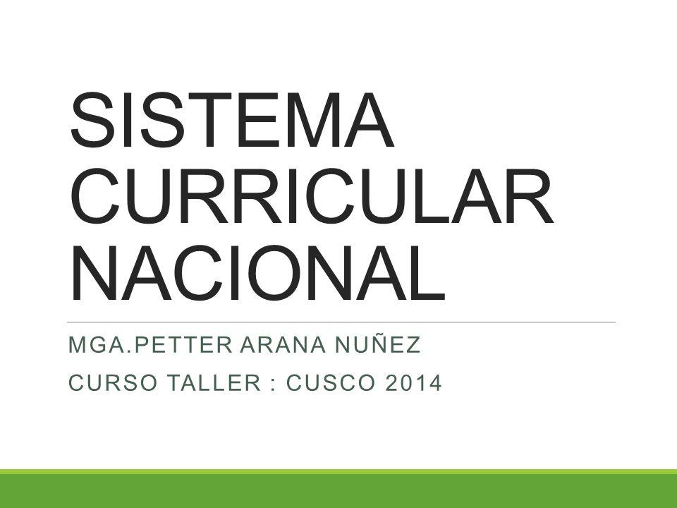 SISTEMA CURRICULAR NACIONAL MGA.PETTER ARANA NUÑEZ CURSO TALLER : CUSCO 2014
