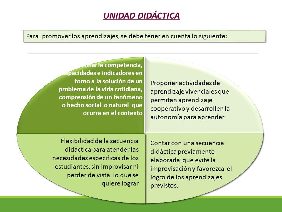 UNIDAD DIDÁCTICA Para promover los aprendizajes, se debe tener en cuenta lo siguiente: Seleccionar la competencia, capacidades e indicadores en torno