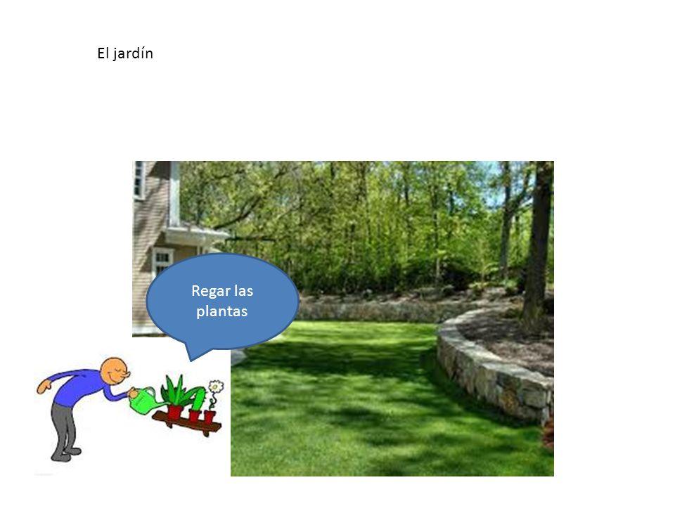 El jardín En el jardín hay… Regar las plantas El jardín