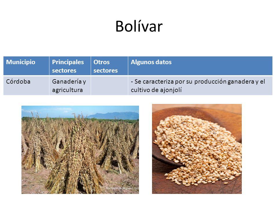 MunicipioPrincipales sectores Otros sectores Algunos datos ChiboloGanadería y agricultura - Principales cultivos: maíz, yuca, ajonjolí, y batata.