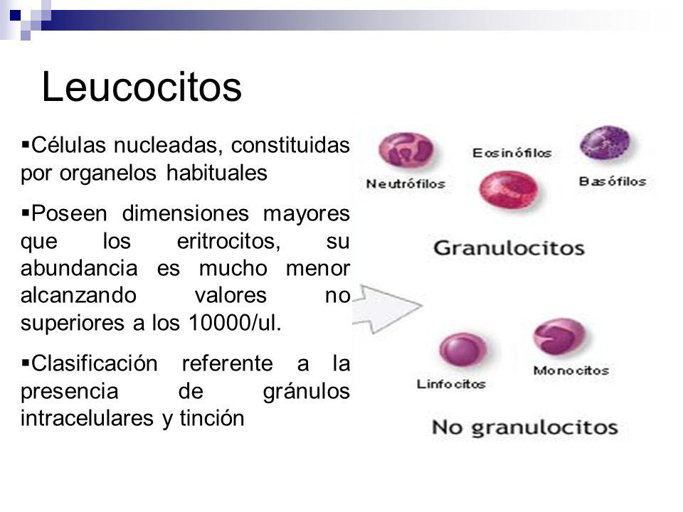 acido urico tratamiento omnilife quem tem acido urico pode comer limao cuando el acido urico esta alto