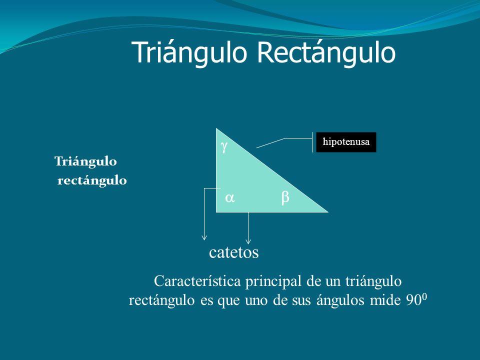 Triángulo Rectángulo Triángulo rectángulo  hipotenusa   catetos Característica principal de un triángulo rectángulo es que uno de sus ángulos mide 90 0