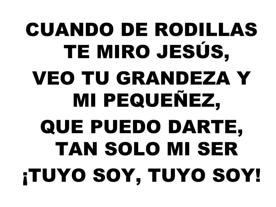 CUANDO DE RODILLAS TE MIRO JESÚS, VEO TU GRANDEZA Y MI PEQUEÑEZ, QUE PUEDO DARTE, TAN SOLO MI SER ¡TUYO SOY, TUYO SOY!