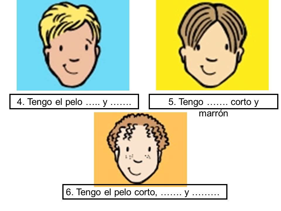4. Tengo el pelo ….. y …….5. Tengo ……. corto y marrón 6. Tengo el pelo corto, ……. y ………