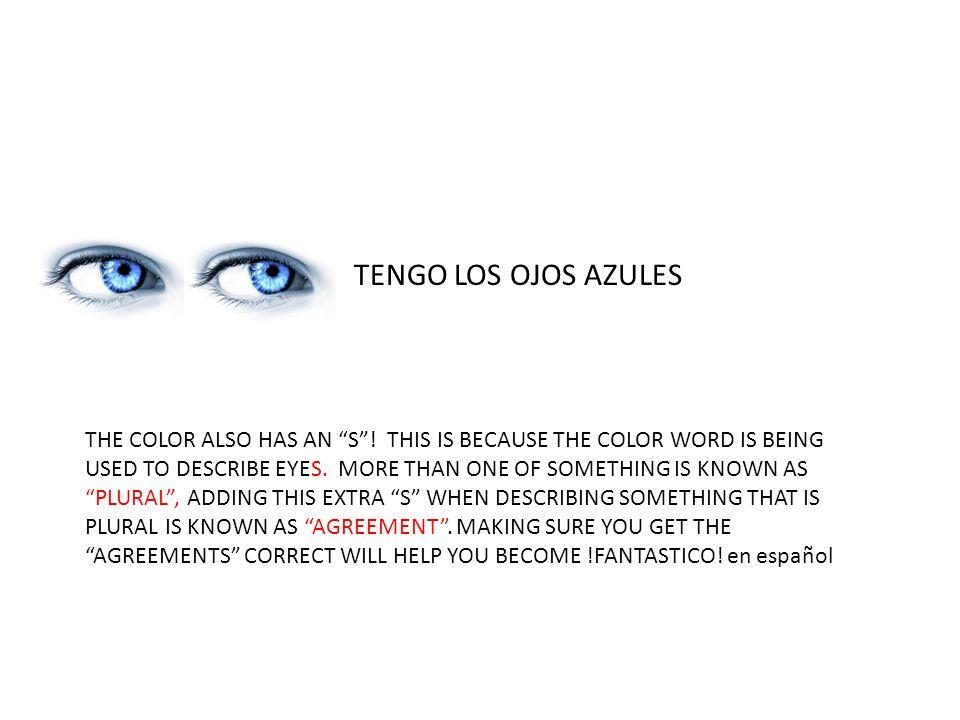 TENGO LOS OJOS AZULES THE COLOR ALSO HAS AN S .