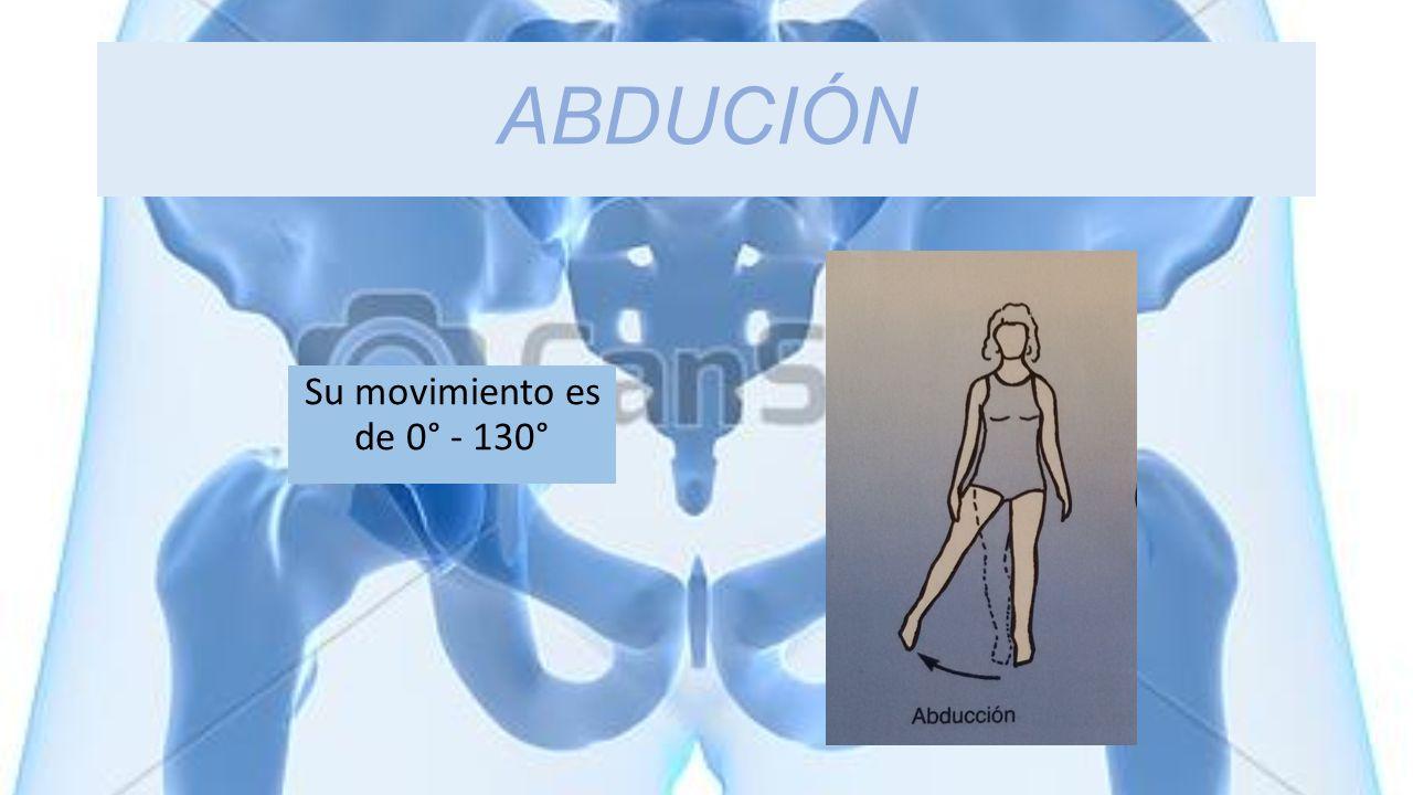 ABDUCIÓN Su movimiento es de 0° - 130°