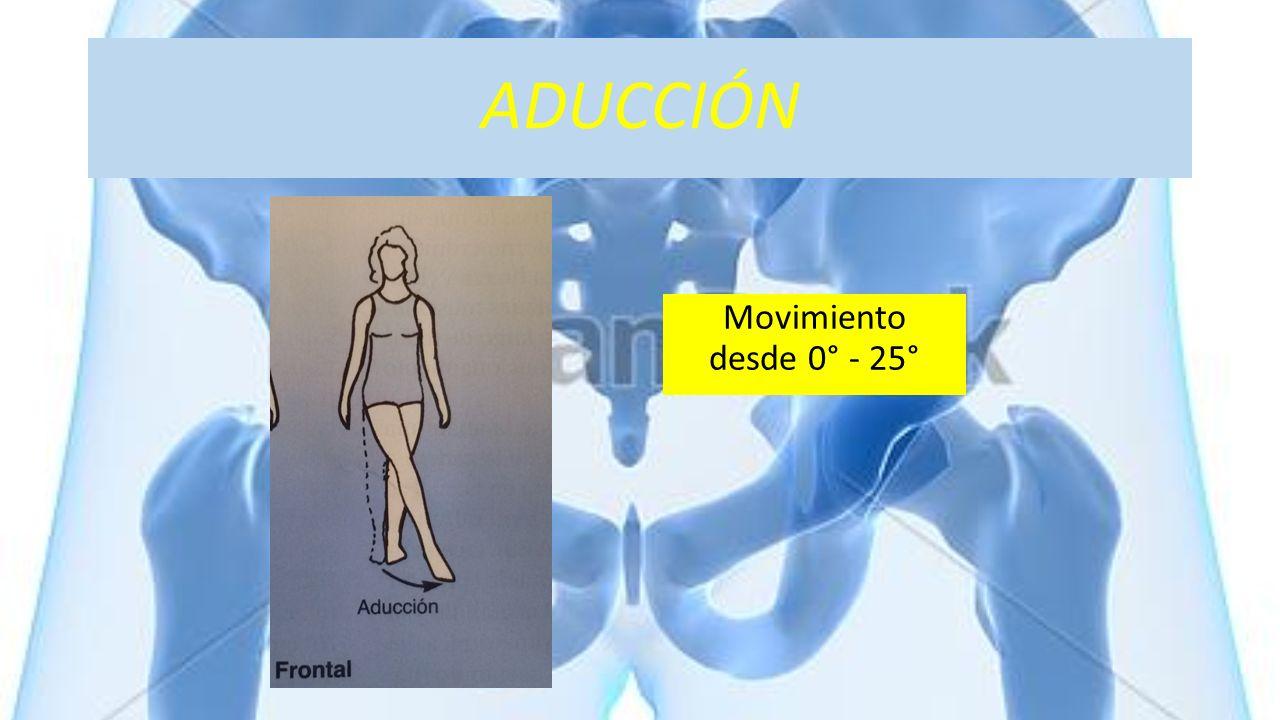 ADUCCIÓN Movimiento desde 0° - 25°