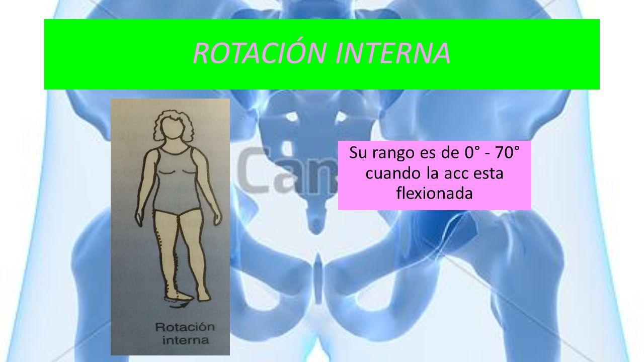 ROTACIÓN INTERNA Su rango es de 0° - 70° cuando la acc esta flexionada