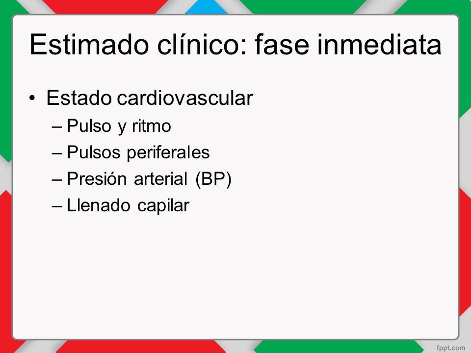 Estimado clínico: fase inmediata Estado cardiovascular –Pulso y ritmo –Pulsos periferales –Presión arterial (BP) –Llenado capilar