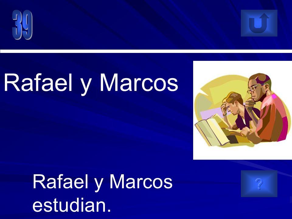 Rafael y Marcos estudian. Rafael y Marcos