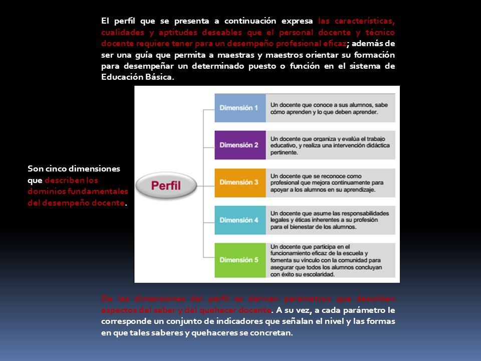 El perfil que se presenta a continuación expresa las características, cualidades y aptitudes deseables que el personal docente y técnico docente requi