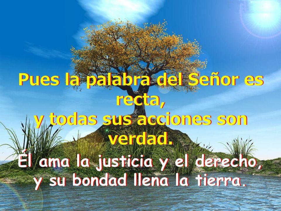 Él ama la justicia y el derecho, y su bondad llena la tierra.