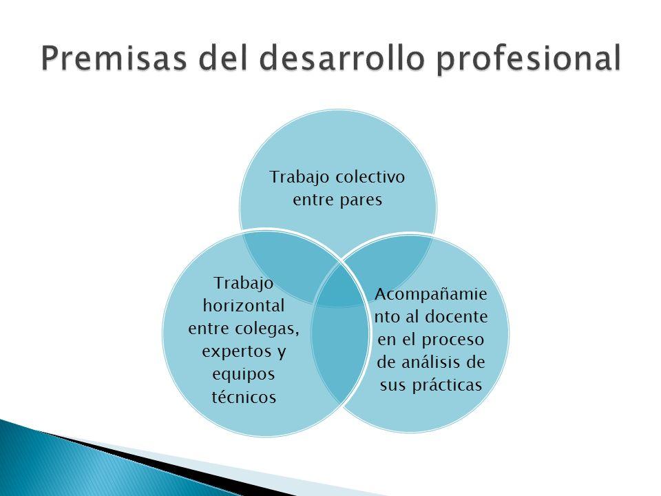 Trabajo colectivo entre pares Acompañamie nto al docente en el proceso de análisis de sus prácticas Trabajo horizontal entre colegas, expertos y equipos técnicos