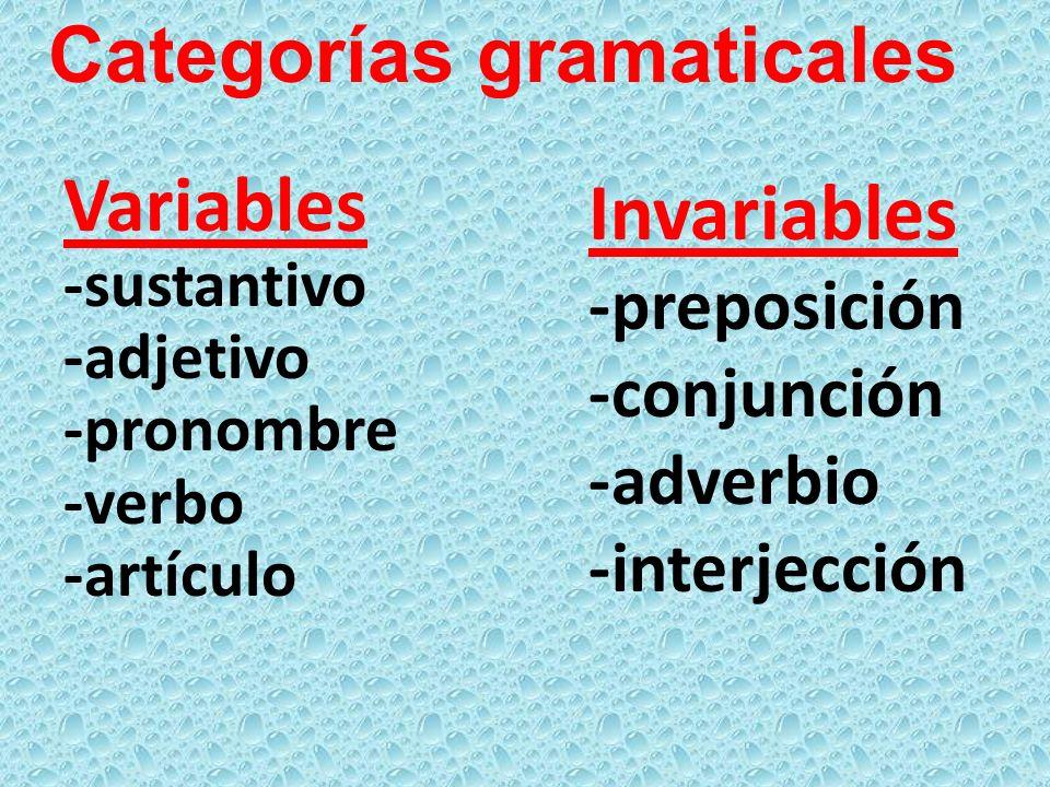 Invariables -preposición -conjunción -adverbio -interjección Variables -sustantivo -adjetivo -pronombre -verbo -artículo Categorías gramaticales