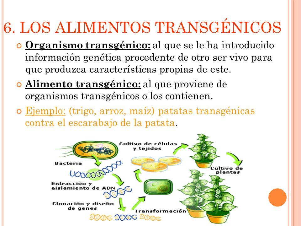 6. LOS ALIMENTOS TRANSGÉNICOS Organismo transgénico: al que se le ha introducido información genética procedente de otro ser vivo para que produzca ca