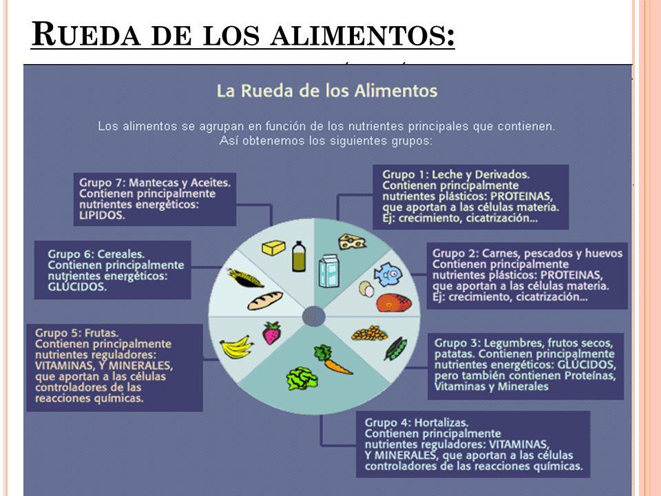 La dieta mediterránea: dieta que siguen los habitantes de los países de la cuenca mediterránea.