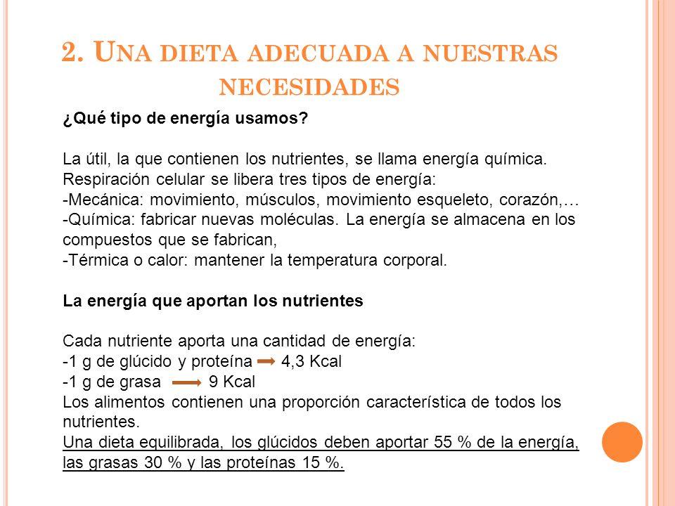 2. U NA DIETA ADECUADA A NUESTRAS NECESIDADES ¿Qué tipo de energía usamos? La útil, la que contienen los nutrientes, se llama energía química. Respira