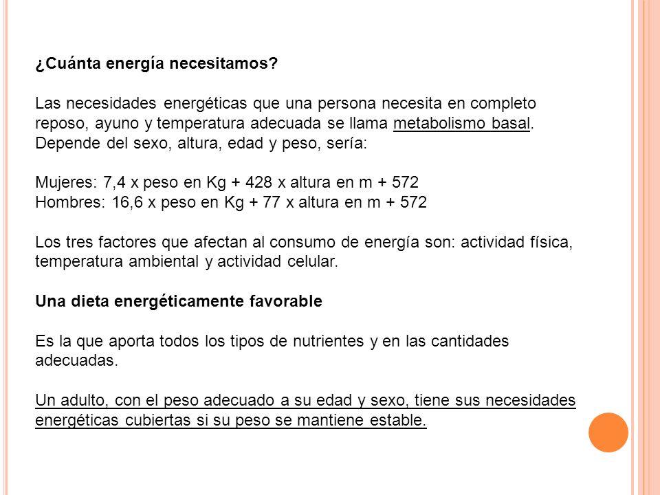 ¿Cuánta energía necesitamos? Las necesidades energéticas que una persona necesita en completo reposo, ayuno y temperatura adecuada se llama metabolism
