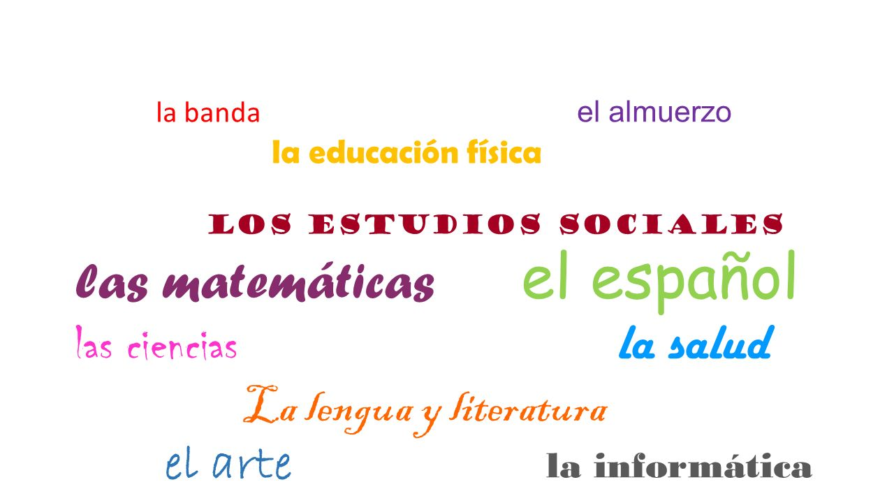la banda el almuerzo la educación física los estudios sociales las matemáticas el español las ciencias la salud La lengua y literatura el arte la info