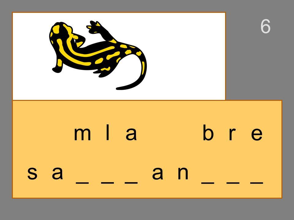 s _ _ __ a m nl a n _ __ ba r 6