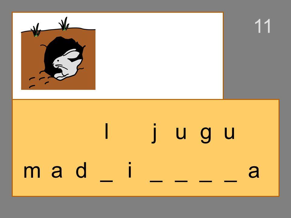 m _ d _i al _ _ _ _a j e gu