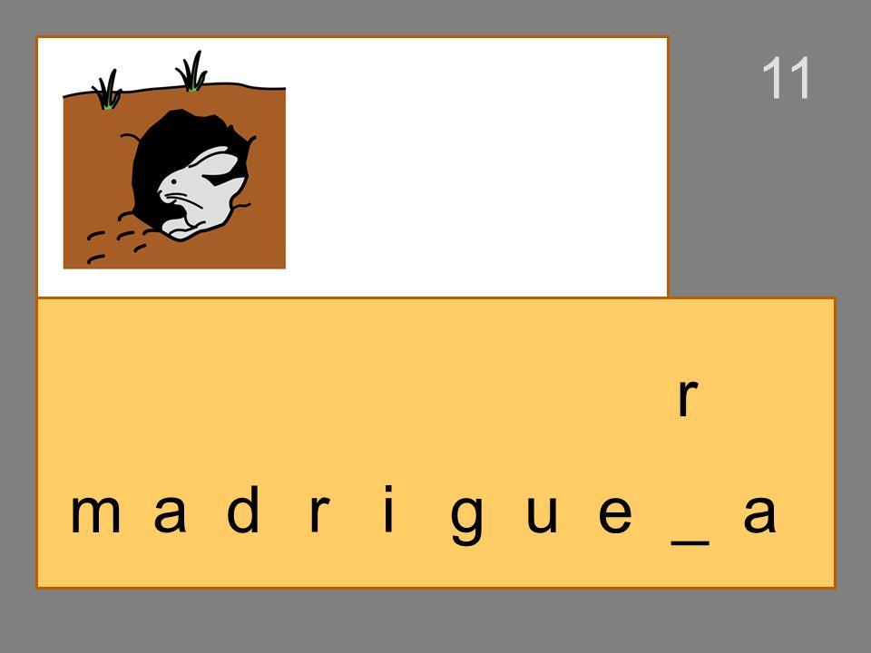 m a d ri g u _ _a es
