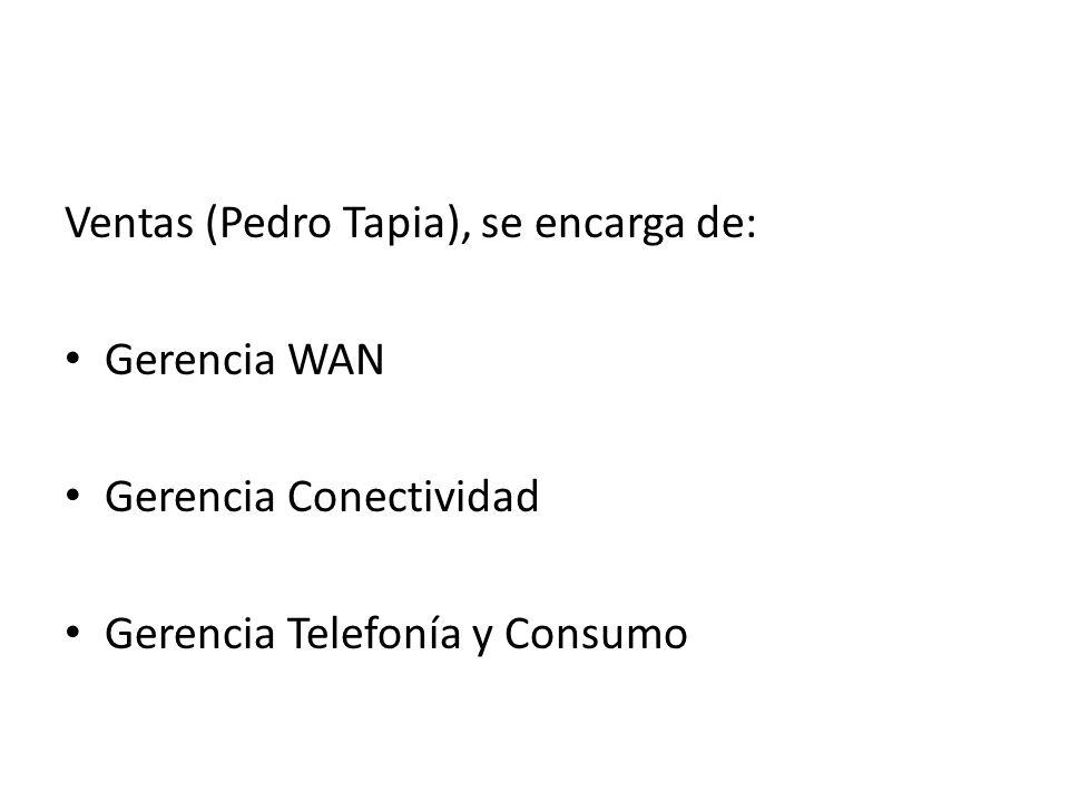 Ventas (Pedro Tapia), se encarga de: Gerencia WAN Gerencia Conectividad Gerencia Telefonía y Consumo