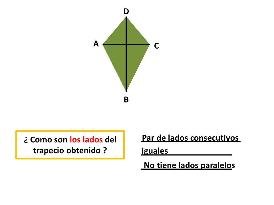 ¿ Como son los ángulos del trapecio obtenido .